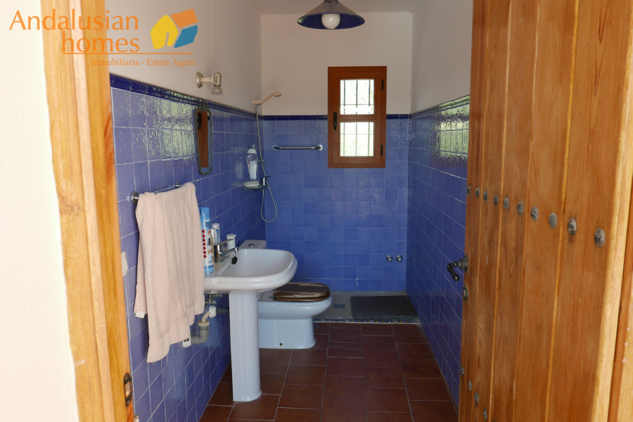 4 BathroomsBathrooms,Equestrian,For sale,1188