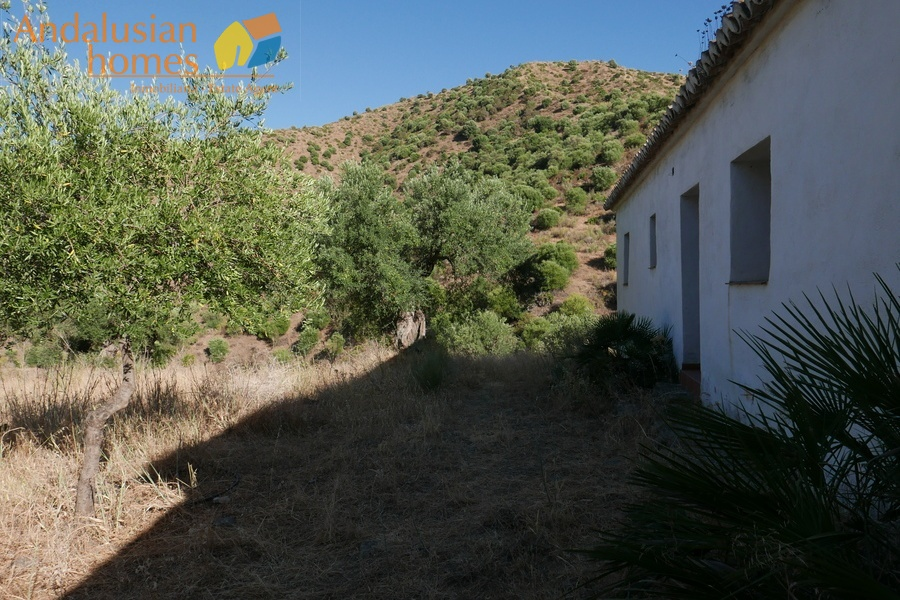 1 BathroomBathrooms,Fincas/Country Houses,For sale,1254